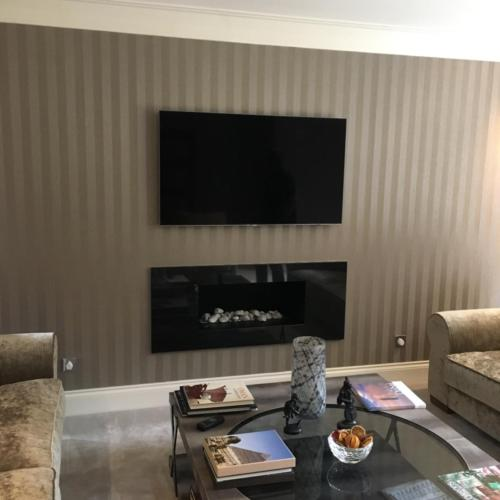 The Chameleon; Polished Granite (TV Above)